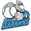 Kiel Seahawks (Baseball)